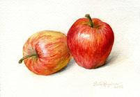 two appleas watercolor still life painting by Lala Ragimov