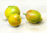 lemons watercolor still life painting by Lala Ragimov